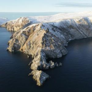 Остров Врангеля